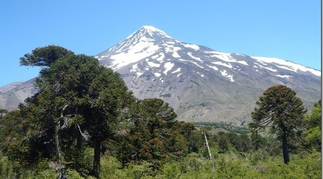Tours around Pucon Chile